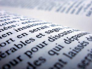 סקירת ספרות באנגלית
